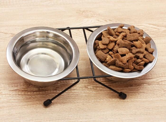 Продукты питания для левретки
