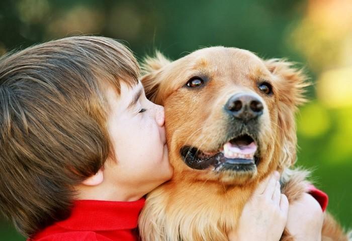 Отучить собаку лаять